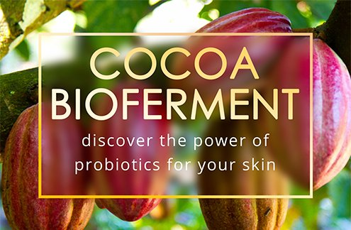 Cocoa Bioferment discover the power of probiotics for your slin
