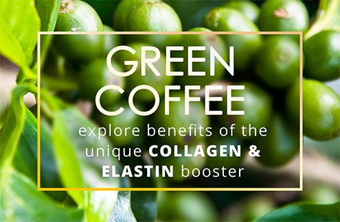 Green Coffee explore benefits of the unique collagen and elastin booster